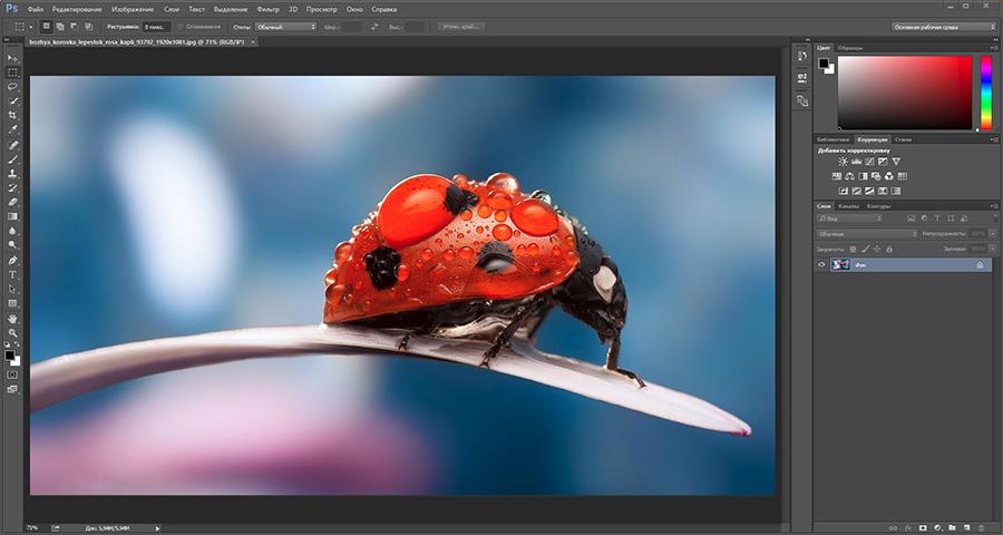 photoshop PhotoShop курсы для веб дизайнеров